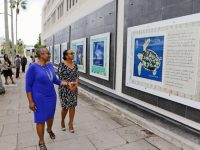 BPO Unveils 50th Anniversary Bermuda Turtle Project Postal Panels With Minister