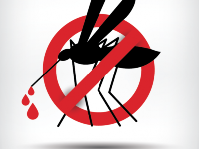 Health Ministry Issues Dengue Alert on Mosquito Control After Case of Dengue Fever Reported