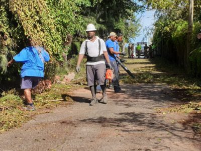 Marsh Folly Facility Advisory: Disposing Horticultural Waste