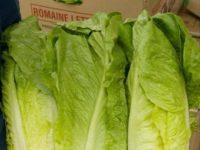 Department of Health Issues Romaine Lettuce Advisory