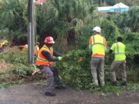 Public Works Advisory on Two-Day Horticultural Community Cleanup
