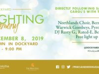 Wedco: Come to Dockyard For a Super Sunday of Christmas Fun!