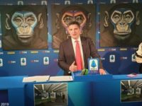 BBC Sport: Series A Uses Monkeys in Anti-Racism Posters