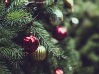 Public Works Advisory on Christmas Tree Collection