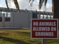 NSC: 'Please Obey The Rules' – No Animals Allowed