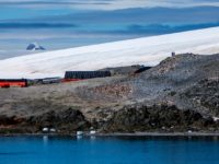 Antarctica Just Hit 64.9 Degrees – Its Highest Temperature Ever Recorded