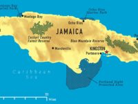 19 New Coronavirus Cases In Jamaica, Tally Now 252