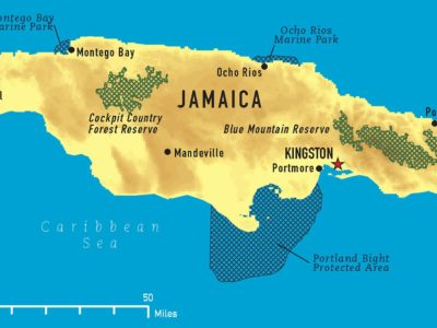Jamaica's Prime Minister Announces Nightly Curfew From April 1 – 8