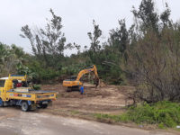 Buy Back Bermuda: Major Restoration Project Underway Near Shelly Bay to Create Nature Reserve