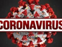 COVID-19: Brazil Hits One Day Record of 751 Coronavirus Deaths