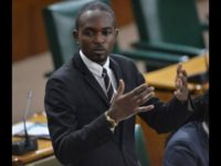 Jamaica Government's Stimulus Package Will Not Be Enough, Says Haughton