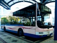 DPT: Temporary Bus Service Interruption On Aug 12