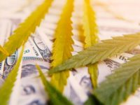 Cannabis-Infused Products Expected to Reach $33 Billion in Sales in 2020