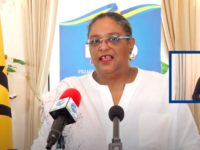 Barbados: Prime Minister Mia Mottley Reshuffles Cabinet