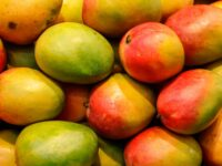 Jamaica To Increase Shipment Of Mangoes To USA & Other Countries
