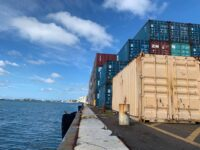 UPDATE: Unionised Dock Workers Offloading Essential Goods Only As Perishable Goods Just Sit There