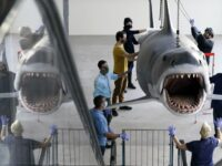 Bruce, The Last 'Jaws' Shark, Docks At The Academy Museum