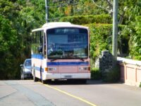 Bus Service Resumes WithThe DPTSunday Schedule &AdditionalRuns