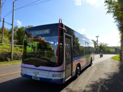 DPT: Bus Route Changes Due To Bacchanal Run On Saturday
