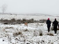 UK Weather: Three-Day Snow Warnings Next Week As Brutal -7C Ice Blast Hits