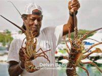 Meet Bermuda's Harvest Heroes In Celebration Of 10th Anniversary Of Restaurant Weeks 2021