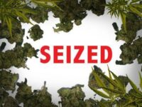 $6M Worth Of Compressed Marijuana Seized At Kingston Port