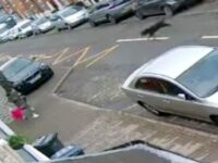 Screams As Girls Aged 2 & 3 Mauled By Dog In UK Street Attack & Rushed To Hospital