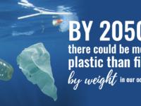 House: Home Affairs Minister On Elimination Of Single-Use Plastics