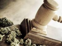 PLP Passes Landmark Cannabis Bill & Tables Motion of No Confidence in OBA