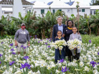 Bermuda Easter Lilies Sent To The Queen To Reach Windsor Castle By Good Friday