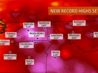 Record-Breaking Heat In Pacific Northwest Hits High Of 116 Degrees