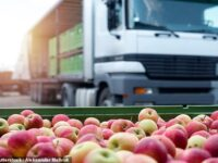 Fresh Food Being Left To Rot Undelivered Due To UK Nationwide Driver Shortage