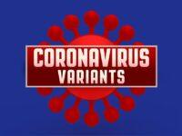 What Is The Mu Variant Of The Coronavirus?
