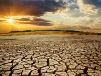 Environment Threats 'Greatest Challenge To Human Rights' — UN